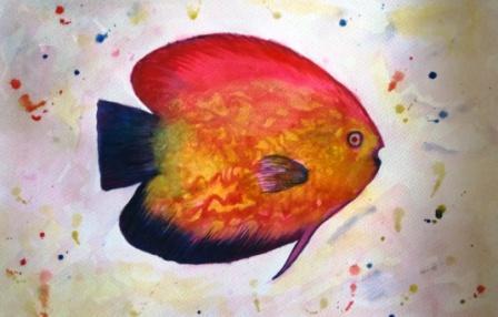 fish watercolor painting